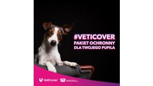 VetiCover – pakiety dla psów i kotów.